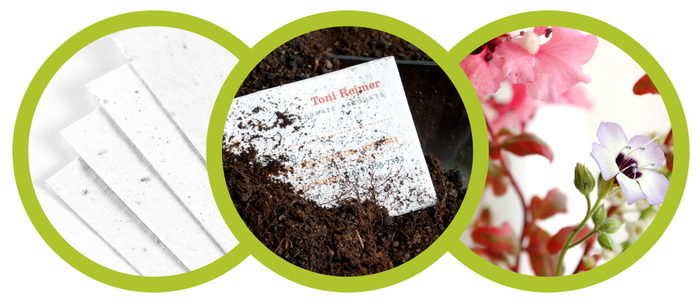See how using seed paper for your next promotion will contribute to habitats for bees and other important pollinators.