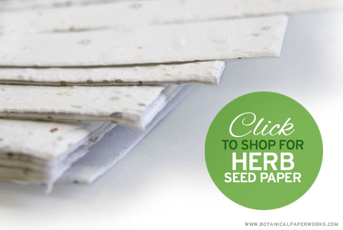 Herb seed paper is great for creating your own invitations, favors and greeting cards.