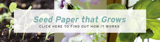 Botanical PaperWorks Seed Paper: How It Works