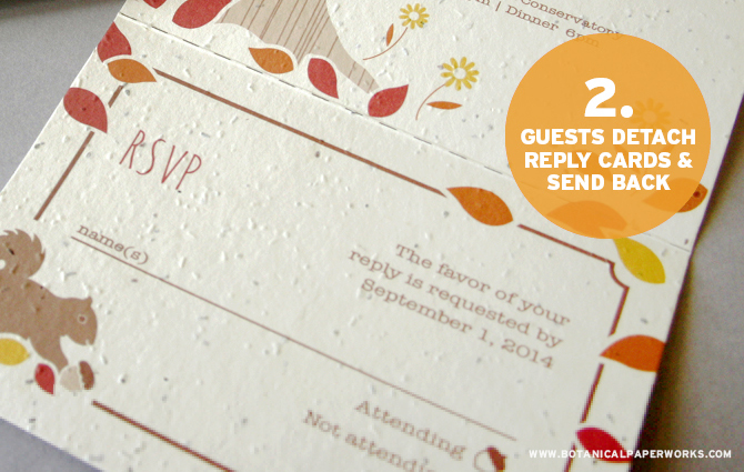 Botanical PaperWorks Seed Paper - Seal and Send Wedding Invitations: Step 2 - Guests Detach Reply Cards & Send Back