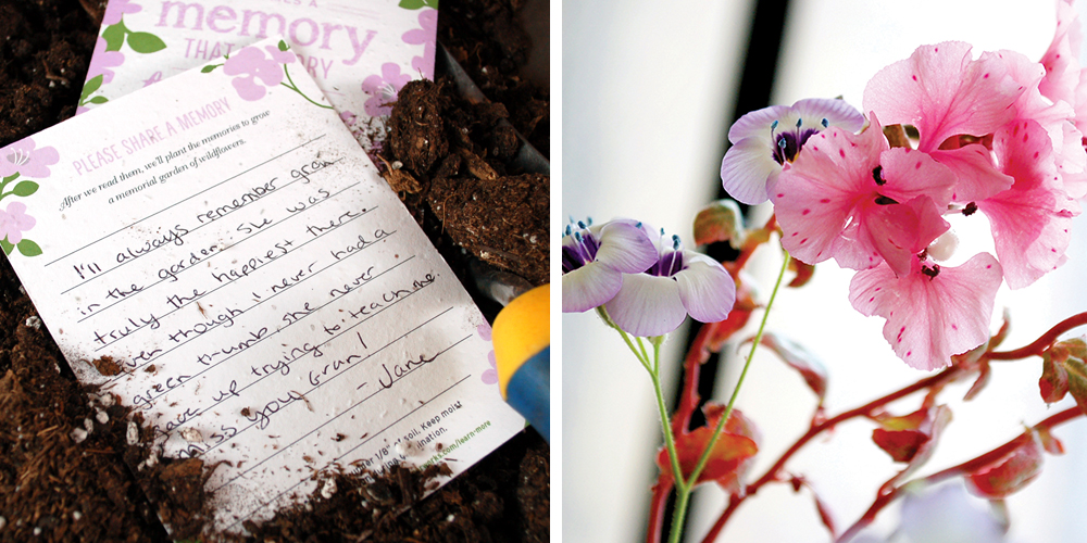 Friends and family can share memories with these beautiful memorial seed cards and then you can plant them to grow a memorial garden of wildflowers.