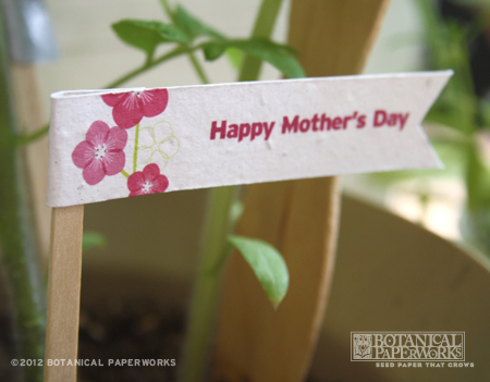 DIY Mother's Day Free Printable Download Seed Paper