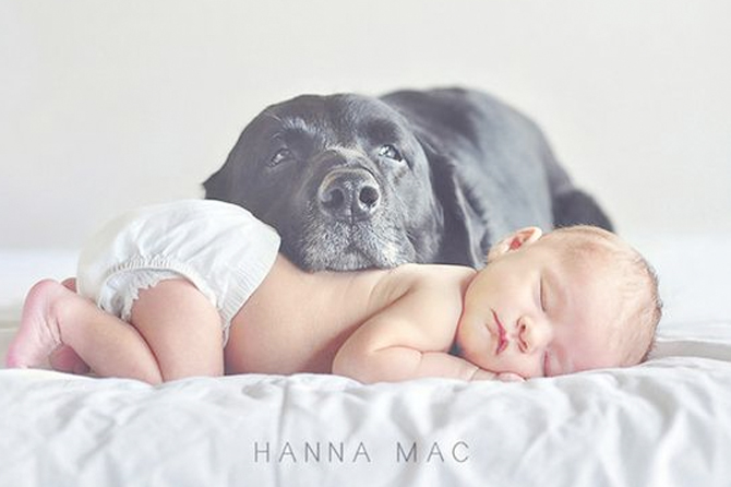 This and more cute ideas to take the perfect new born pics for birth announcements.