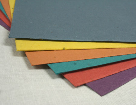 new seed paper colors june