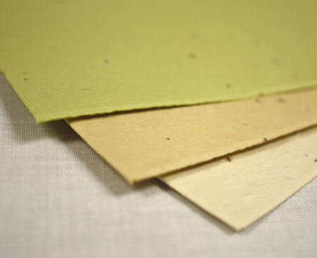 new seed paper colors