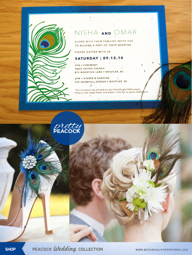 Gorgeous peacock mini inspiration board including a great new peacock wedding collection that you can plant to grow wildflowers!