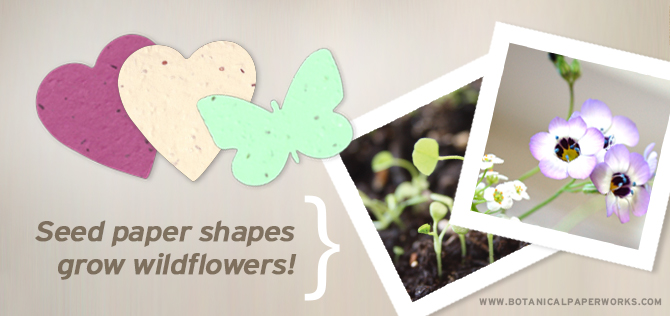 Seed paper shapes that your guest can plant to grow flowers leading up to your big day.