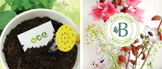 Learn more about zero waste promotional items from Botanical PaperWorks