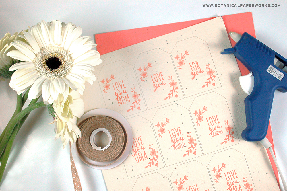 Find out what you'll need to make plantable seed paper bouquet holders with Mother's Day tags.