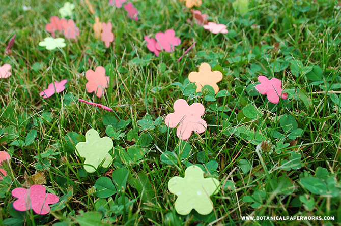 Spead this plantble confetti at your next summer party for a fun, eco-friendly detail that supports the growth of real wildlfowers.