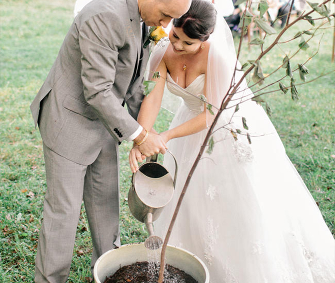 Plant powered weddings are all about adding more of your eco-friendly values into your day so when you plant a tree together, the green act will symbolize the beauty of growth, life and new beginnings in a way that will live on for years to come.
