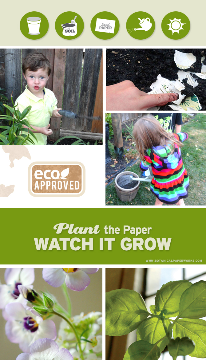 Plant seed paper in soil and watch it grow yummy herbs or beautiful flowers for Earth Day!