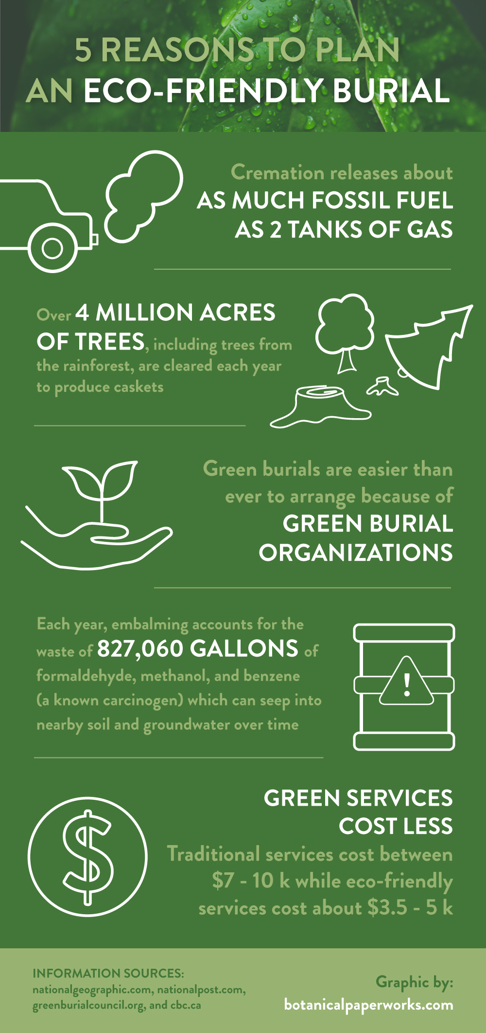5 Reasons To Plan An Eco-friendly Burial