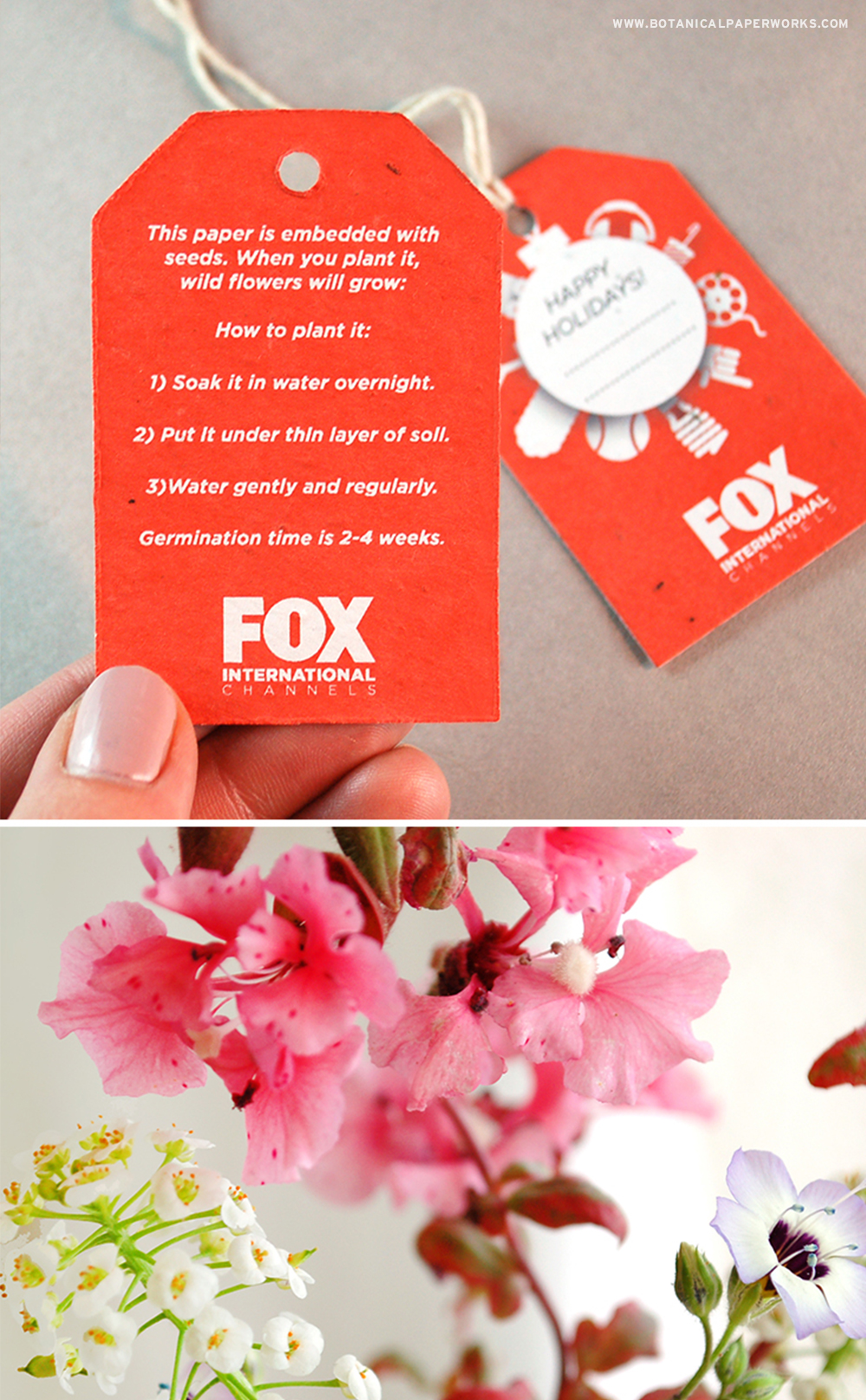 Read more about how FOX sent a green message to partners & affiliates with seed paper gift tags that grow flowers!