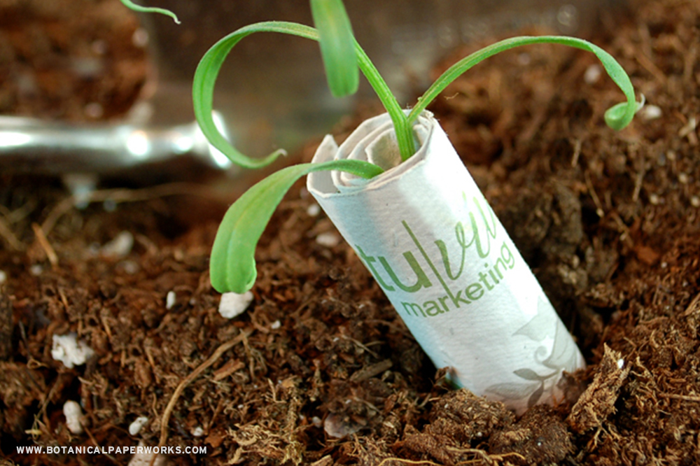 Plant these seed paper bills in soil to watch wildflowers bloom.