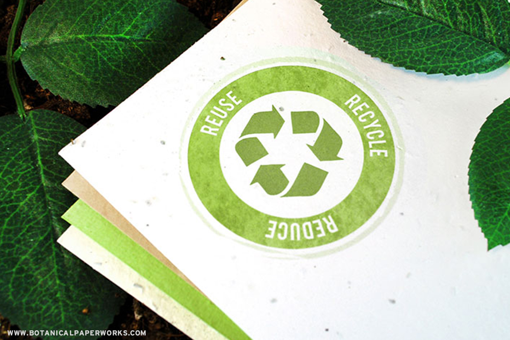 Seed Paper Promotions are Eco-APPROVED because they leave no waste behind!  Learn more about how they help businesses GROW.