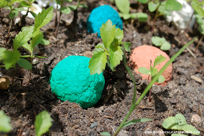 Seed bombs are packed with wildflower seeds that sprout and grow when planted.
