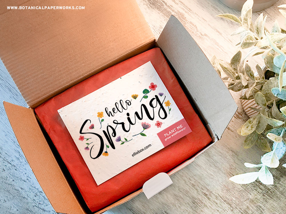Plantable seed paper in a subscription box or kit.