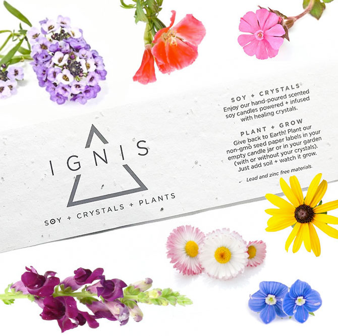 IGNIS Soy Candles Connects With Customers Using Seed Paper Packaging