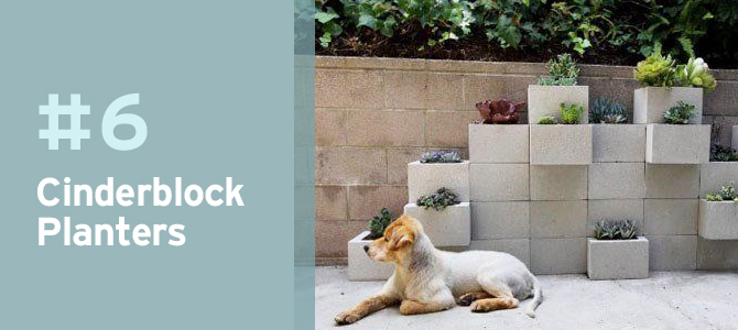 For a more modern look, use cinderblocks as planters for a simple and clean style.