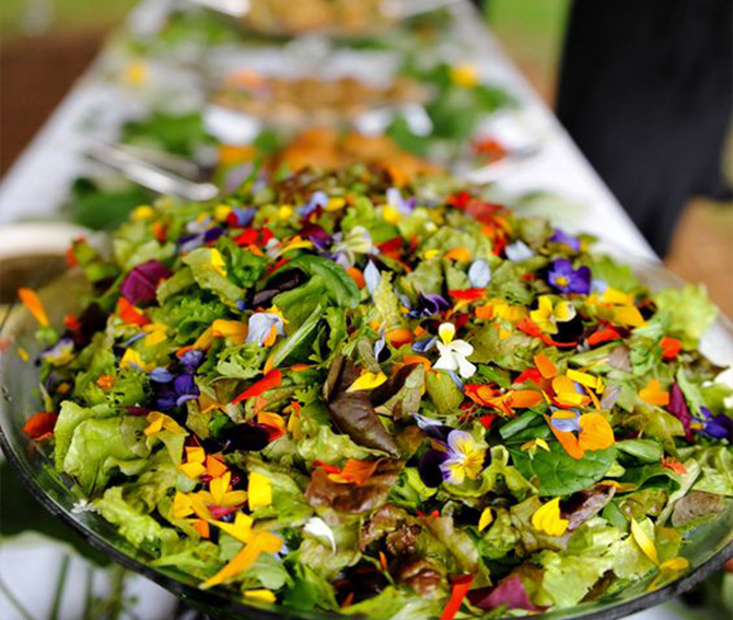 While some guests might fear a meatless wedding menu, incorporating a variety of colorful dishes like the bright salad pictured above will make sure they leave your wedding feeling full and satisfied. They might even consider incorporating more of a plant-based diet into their own lives!