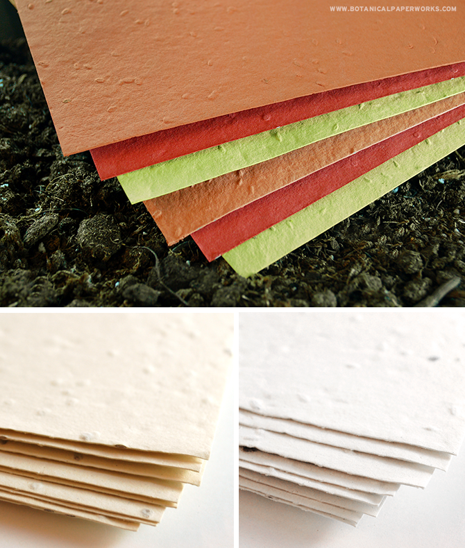 Perfect for creators with a passion for crafting, DIY's, stationery and cuisine, this NEW Plantable Seed Paper can be planted to grow carrots, lettuce and tomatoes!