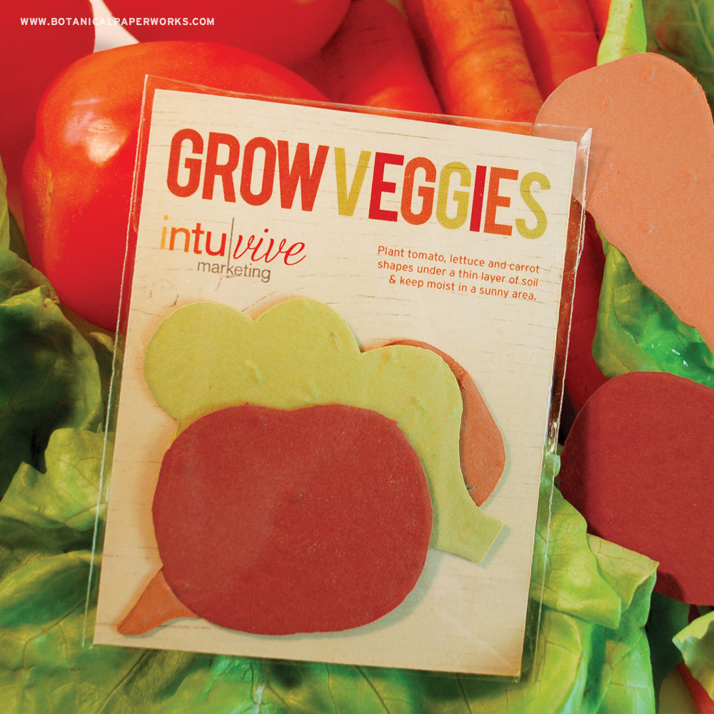 This summer promotional product gives a garden of veggies. Learn how and create yours today!