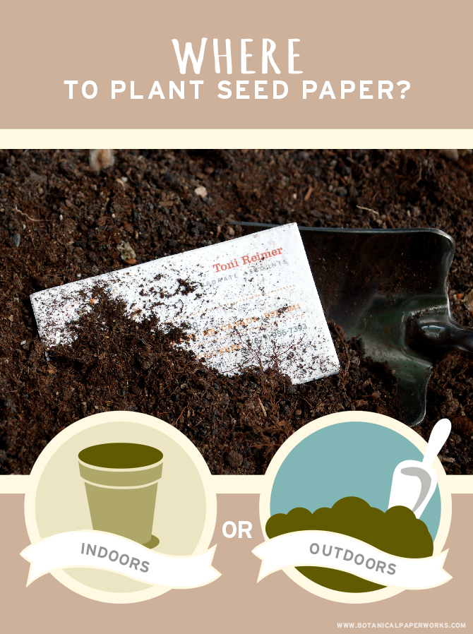 Planting seed paper is easy whether you choose to plant it inside or outdoors.