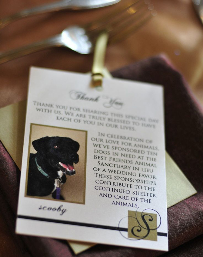 In lieu of favors or wedding gifts, donations to your favourite charity is a thoughtful and unique wedding element.