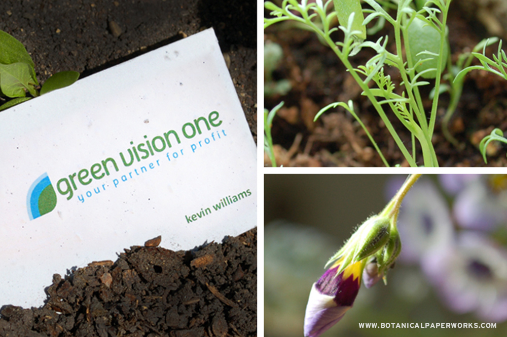 Plantable business cards printed on recycled paper that is embedded with seeds.