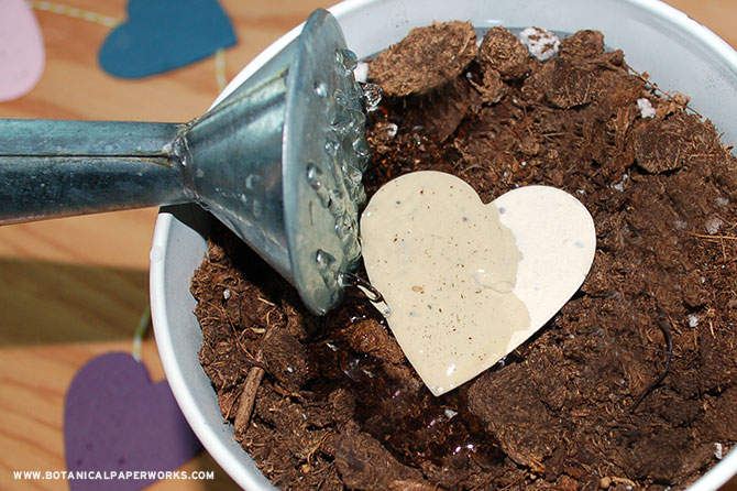 When you're done with your seed paper crafts, don't throw them away. Instead, plant them in a pot of soil or a garden to grow colorful wildflowers.