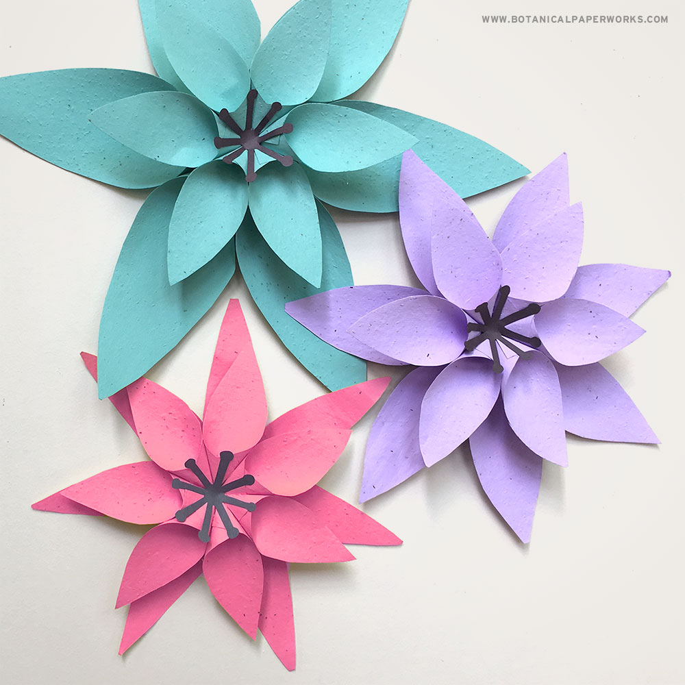 These paper flowers are made with seed paper so that you can plant after to grow real flowers!
