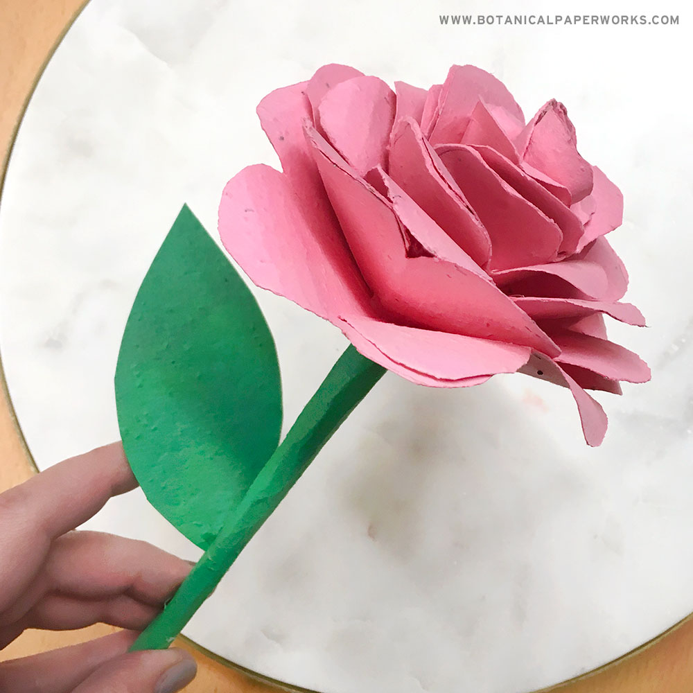 rose made out of seed paper