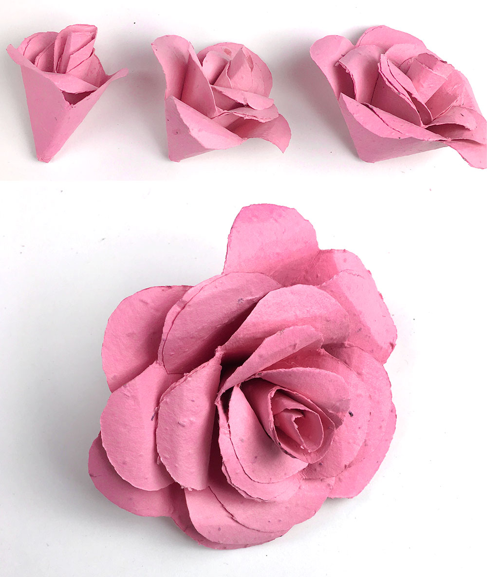 seed paper flower blossoms