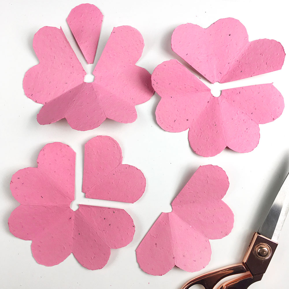 making seed paper petals for flowers