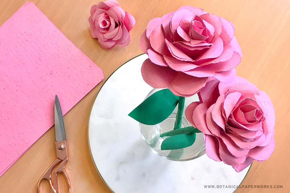seed paper roses with scissors