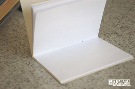 Step 6 in DIY PLantable Single Section Book-2