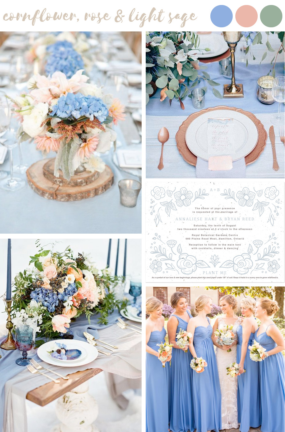 Find wedding color inspiration like this soft and dreamy cornflower, rose and light sage palette for stylish and trendy summer weddings.