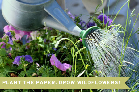 Botanical PaperWorks Plantable Paper in Bloom
